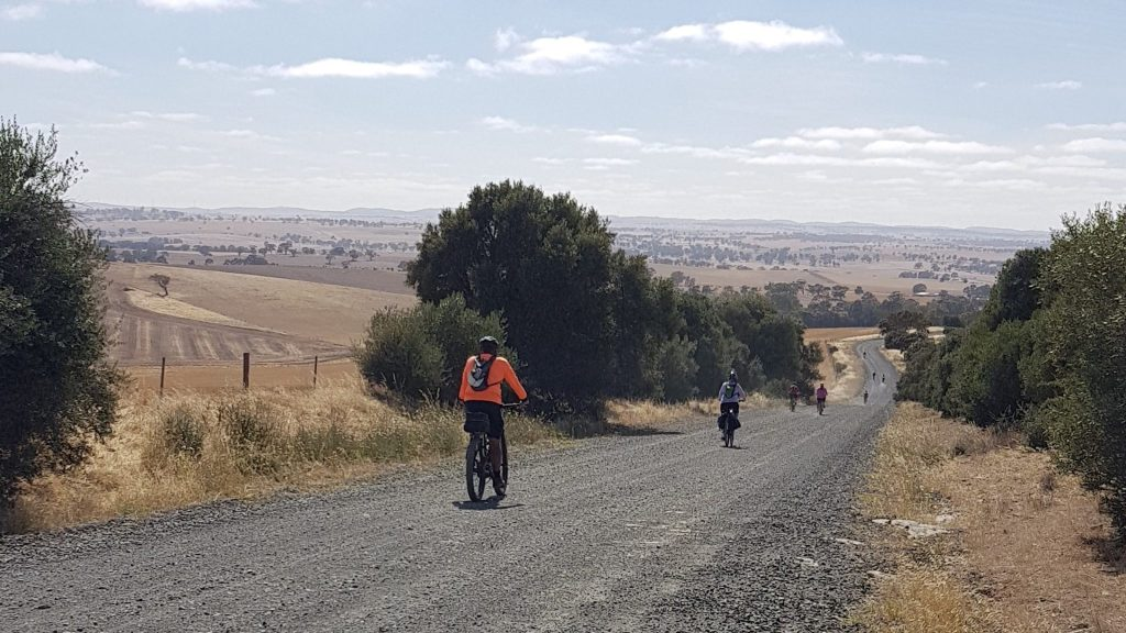 Lavender Cycling Trail (M2C) - Clare to Waterloo descent on Watervale Road