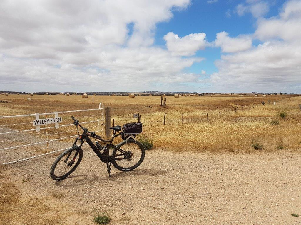 Lavender Cycling Trail (M2C) - Eudunda to Truro - Gate on the Dutton Mail Run