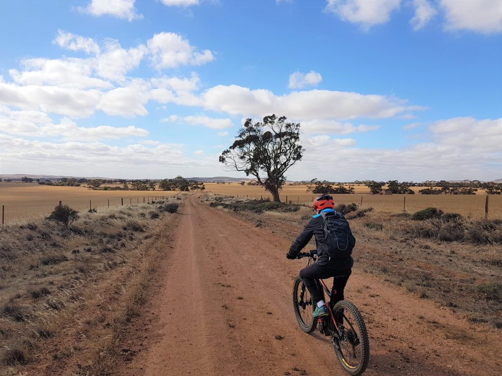 Lavender Cycling Trail (M2C) - Eudunda to Truro - Rural Road South of Eudunda