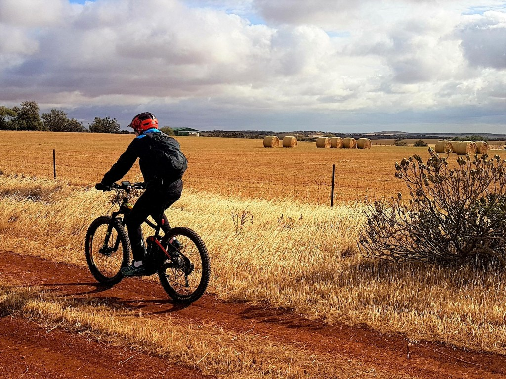 Lavender Cycling Trail (M2C) - Eudunda to Truro - Rural Scene South of Eudunda