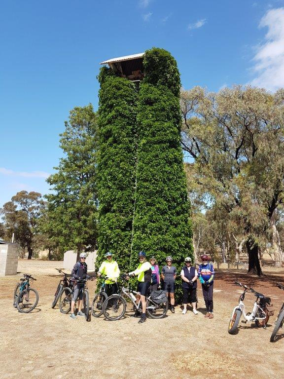 Lavender Cycling Trail (M2C) - Truro to Eden Valley - Bell tower at North Rhine St Peter's Lutheran Church