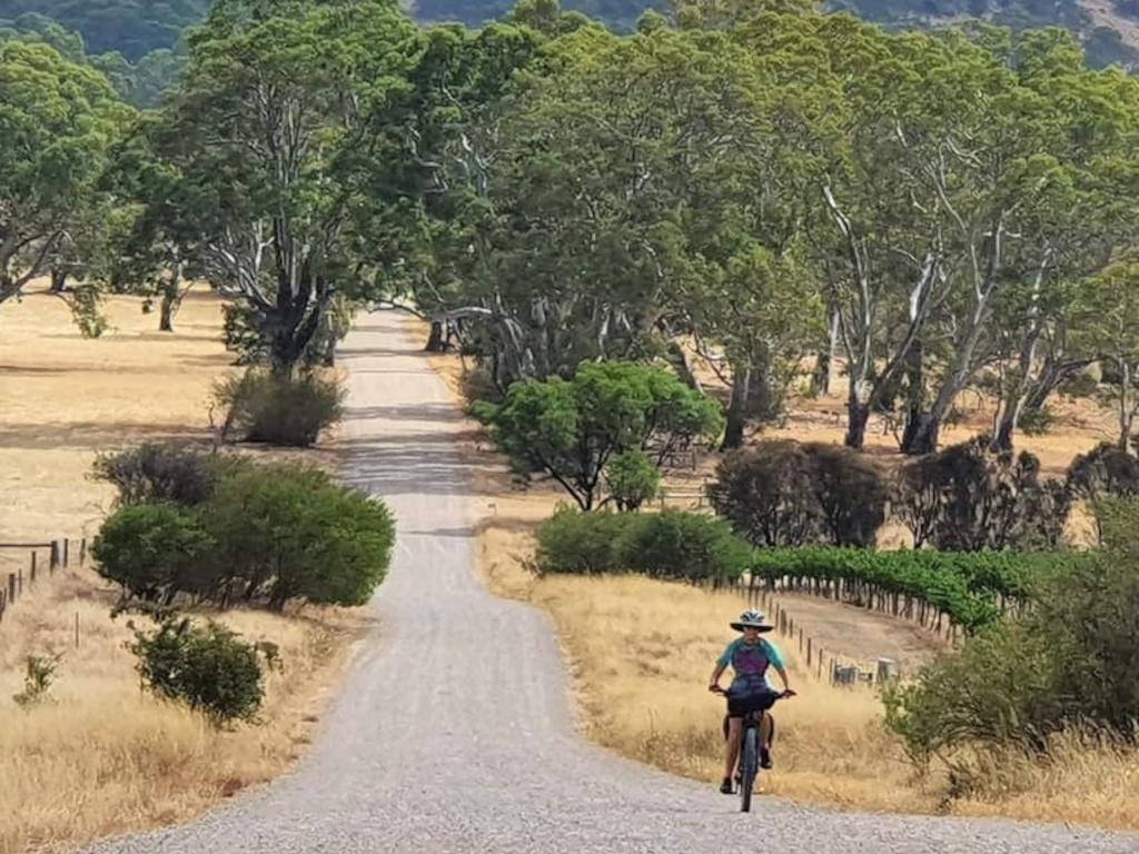 Lavender Cycling Trail (M2C) - Truro to Eden Valley - Heading for Eden Valley - photo by Derek