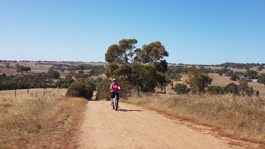 Lavender Cycling Trail (M2C) - Eden Valley to Mount Pleasant - N Herbig Road