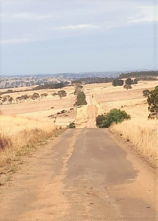 Lavender Cycling Trail (M2C) - Eden Valley to Mount Pleasant - Verrals Road - Photo by Kay Haarsma
