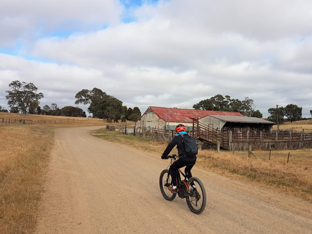 Lavender Cycling Trail (M2C) - Mount Pleasant to Murray Bridge - riding past Hoads Woolshed